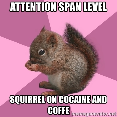 attention-span-level-squirrel-on-cocaine-and-coffe